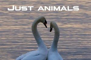 Just animals